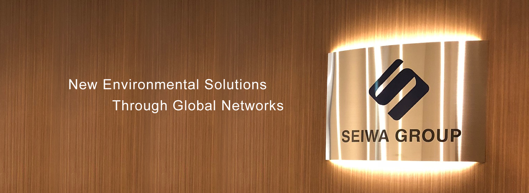 New Environmental Solutions Through Global Networks